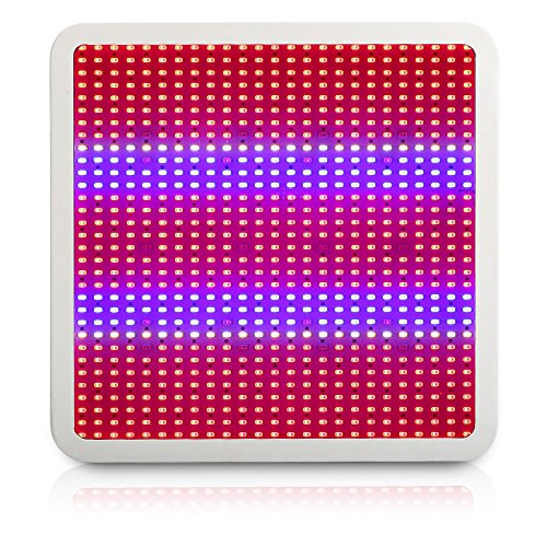 Derlight 800W Vollspektrum LED Panel