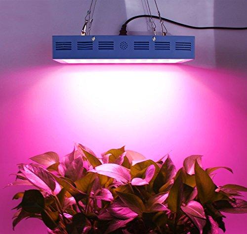 pflanzenlampebestva-x6-1200w-led-grow.info