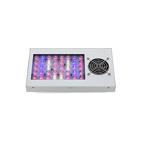 Growking SAGA 100 Watt LED Grow LED