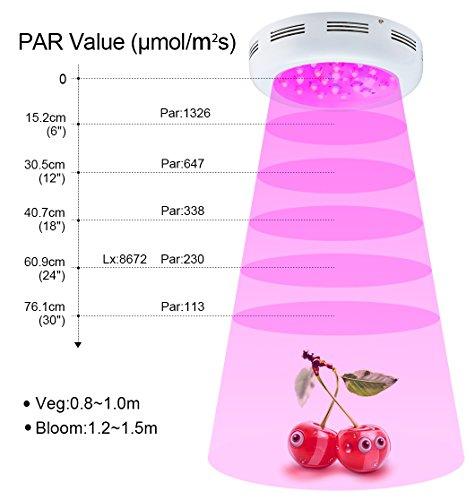 BESTVA 300W Dual Chips Pflanzenlampe LED Grow Lampe Pflanzenlicht Wachstumslampe Vollspektrum für Treibhaus Zimmerpflanzen Hydrokultur Gemüse und Blumen - 4
