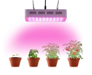 LED Grow Lampe